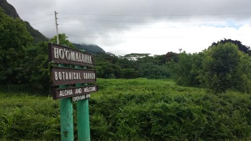 Yol Üstünde Uğradığımız Ho'omaluhia Botanik Bahçesi